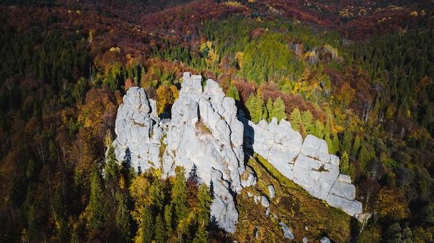 Mountines floresta com paisagem de rochas