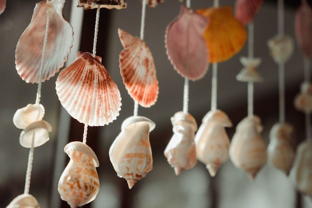 Móvel feito de conchas pendurado na janela