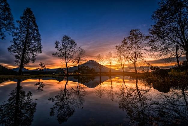 Mt. fuji com grandes árvores e lago ao nascer do sol em fujinomiya, japão