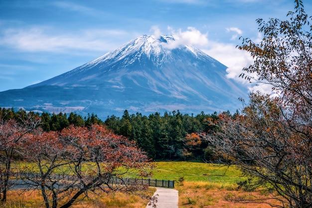 Mt. fuji no fundo do céu azul com folha do outono no dia em fujikawaguchiko, japão.