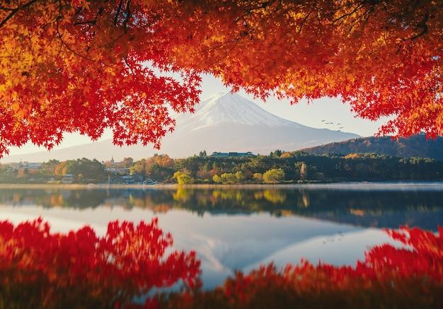 Mt.fuji no outono no nascer do sol