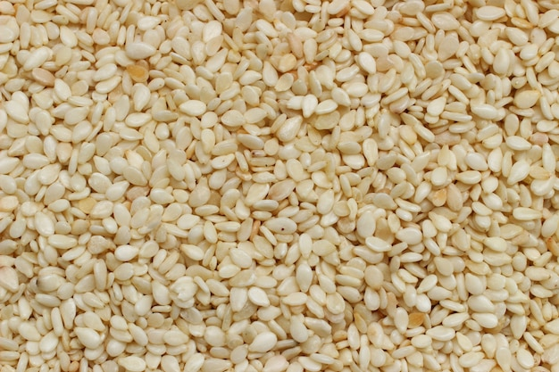 Muita textura ou fundo de sementes de gergelim