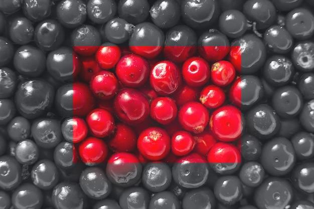 Muitas bagas de uma mirtilo vermelho no fundo de bagas cinzentas