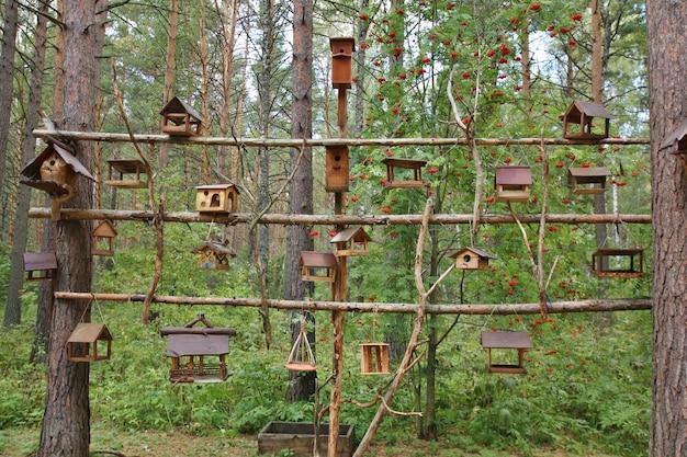 Muitas caixas de nidificação em uma árvore