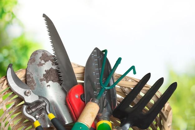 Muitas ferramentas de jardinagem em fundo de madeira