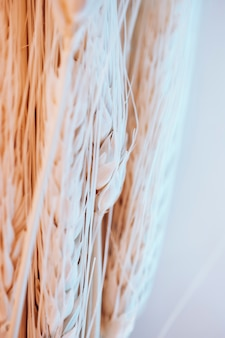 Muitas fibras e sementes de trigo