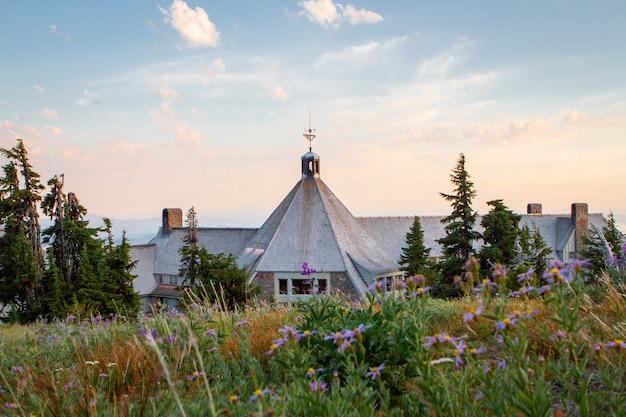 Muitas flores roxas florescendo na frente de uma casa mal-assombrada no monte. hood national forest, eua