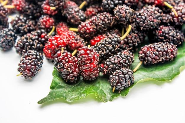 Muitas frutas mulberry no fundo branco