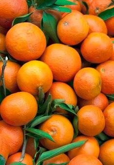 Muitas laranjas com folhas e galhos.