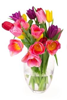 Muitas lindas tulipas coloridas com folhas em um vaso de vidro isolado