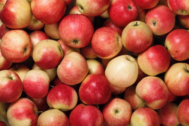 Muitas maçãs vermelhas. condição natural. vista do topo
