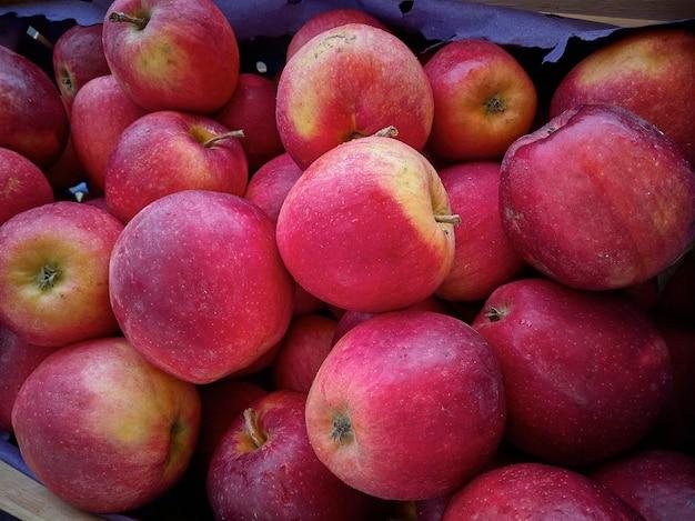 Muitas maçãs vermelhas em exposição em uma barraca do mercado.