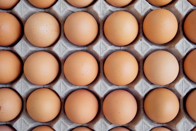 Muito a galinha crua fresca do ovo alinhou em seguido.