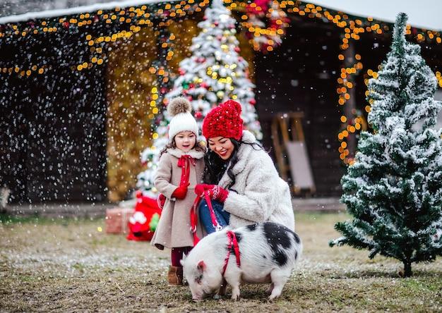 Muito jovem mulher asiática e sua filha com roupas de inverno, posando com porco rosa contra fundo de natal.