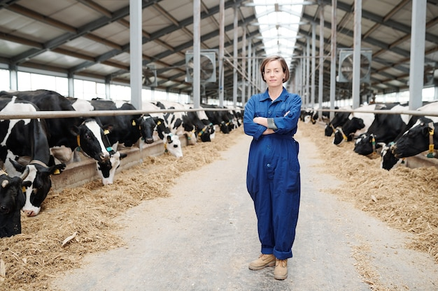 Muito jovem trabalhadora de fazenda em trajes de trabalho, parada em um longo corredor entre duas fileiras de vacas leiteiras durante o trabalho