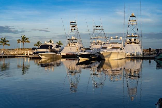 Muitos barcos ancorados em uma marina com palmeiras e céu azul