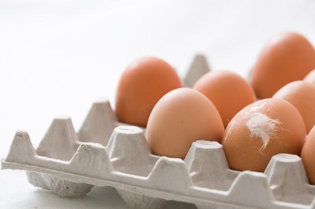 Muitos ovos castanhos claros em uma caixa de papelão e um ovo com uma pena branca