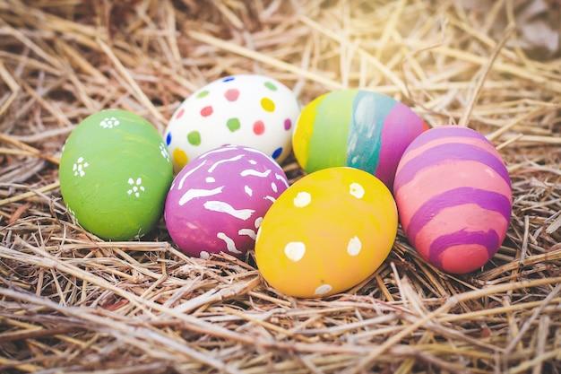 Muitos ovos da páscoa coloridos, projetos bonitos no feno. festival