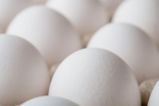Muitos ovos de galinha branca comida em macro de caixa de bandeja
