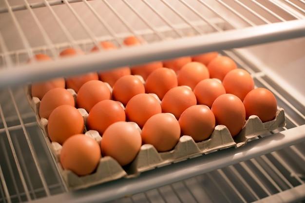 Muitos ovos de galinha na bandeja na geladeira