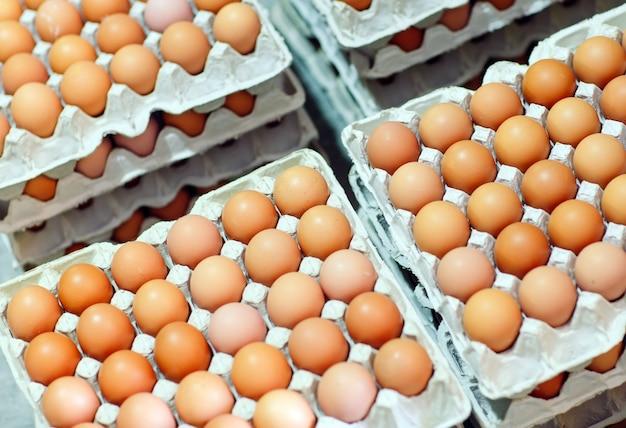Muitos ovos nas caixas de papelão.