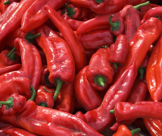 Muitos pimentões vermelhos picantes