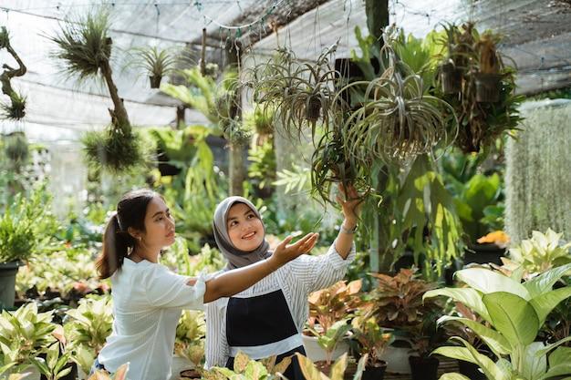 Mulher, aconselhando o cliente durante a compra de plantas