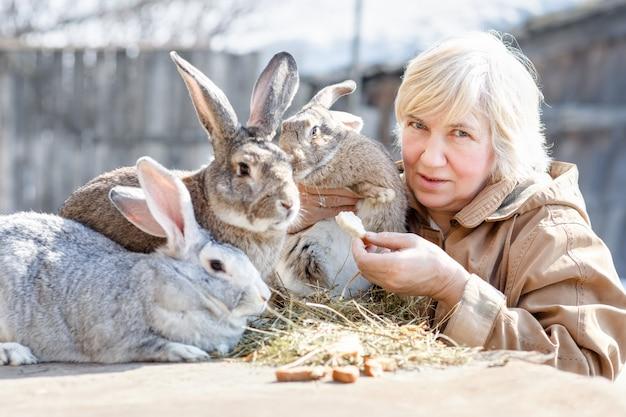 Mulher adulta alimenta fazenda de coelhos. gado doméstico