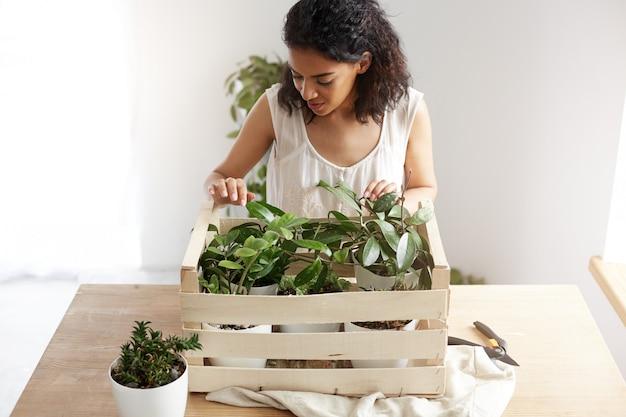 Mulher africana bonita que sorri cuidando das plantas na caixa no local de trabalho. copie o espaço.