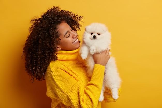 Mulher afro-americana positiva segura o cachorro obediente em miniatura nas mãos, passa o dia de folga com o animal de estimação favorito, comprou o animal na loja de animais, isolado sobre fundo amarelo.