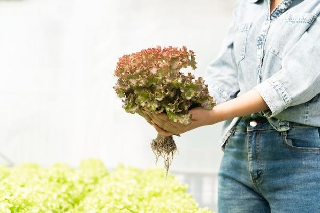 Mulher agricultora asiática segurando vegetais crus