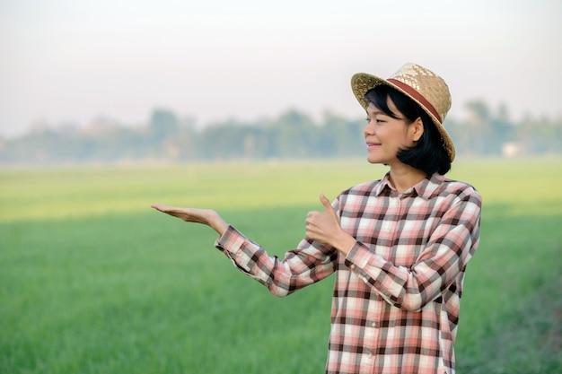 Mulher agricultora asiática sorri e posa com o polegar para cima em uma fazenda de arroz verde