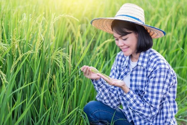 Mulher agricultora asiática sorrindo e sentada olhando arroz em casca na fazenda verde