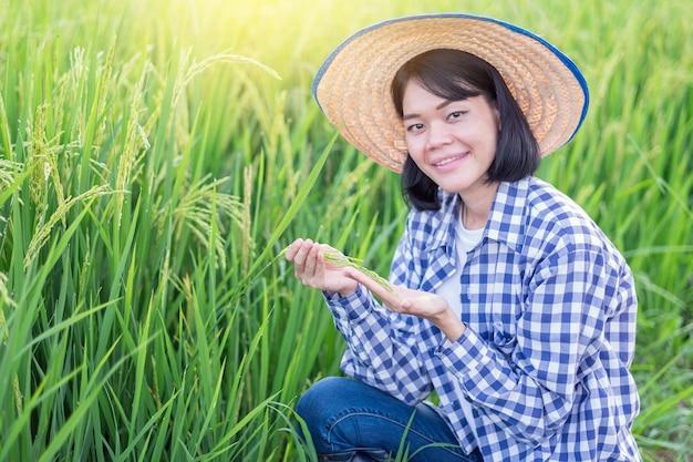 Mulher agricultora asiática sorrindo e sentada segurando arroz em casca na fazenda verde