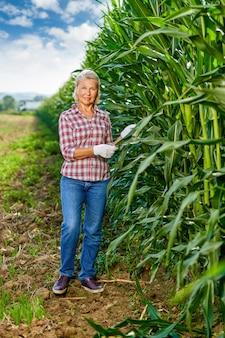 Mulher agricultora colhendo milho