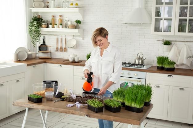 Mulher agricultora da cidade regando brotos de ervilha em uma estufa moderna