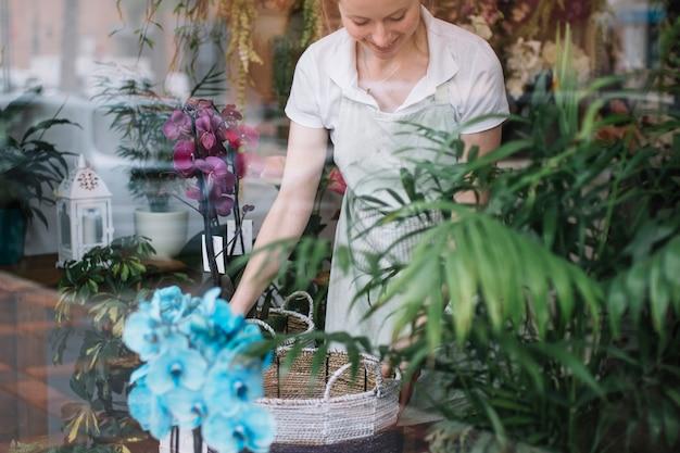 Mulher alegre organizando vitrine
