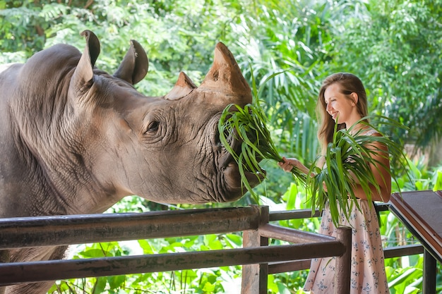 Mulher alimentando o rinoceronte no zoológico