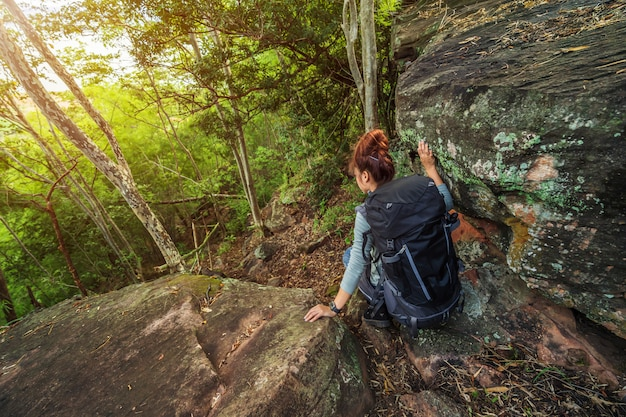 Mulher alpinista descendo na floresta