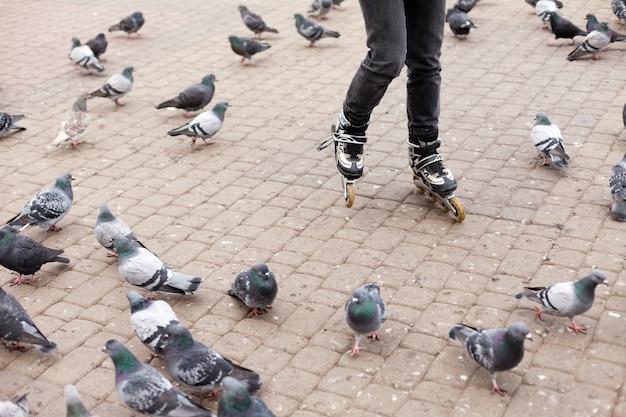Mulher andar de patins com pombos