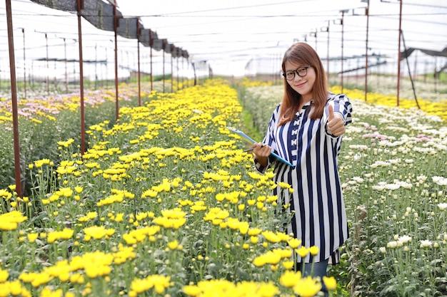 Mulher asiática atraente aparecendo polegar em fazenda de flores de crisântemo