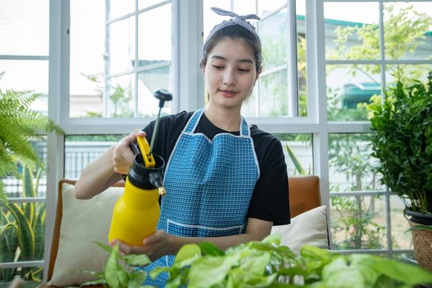 Mulher asiática de plantio e jardineiro pulverização de água na planta do jardim em casa.