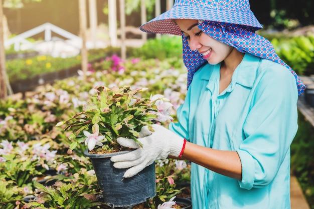 Mulher asiática de trabalhador feliz com plantio de flores, cuidar de flores em estufa.