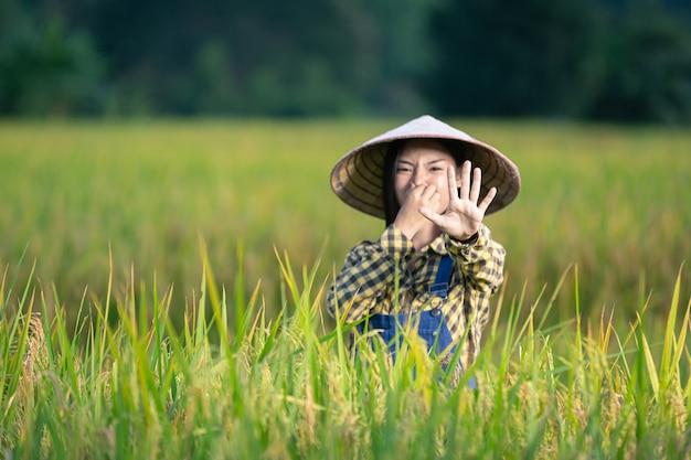 Mulher asiática feliz escreva notas nos campos de arroz
