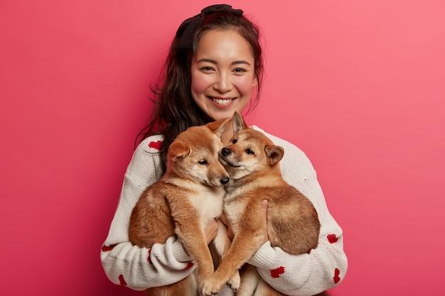 Mulher asiática feliz segura dois adoráveis cachorrinhos shiba inu, sorri agradavelmente, usa um macacão branco e se preocupa com animais domésticos
