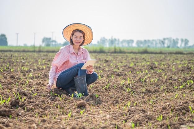 Mulher asiática jovem agricultor sentado e segurando a tablet inteligente em um campo de milho. fazenda de tecnologia imagem do conceito.