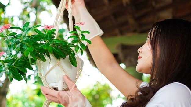Mulher asiática pendurando plantas em casa faz uma bela decoração