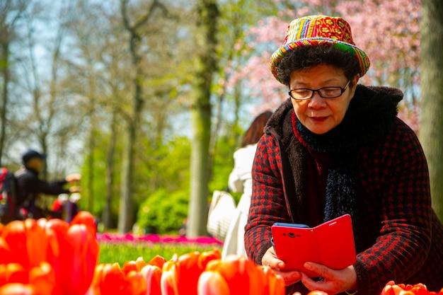 Mulher asiática usando smartphone para tirar uma foto de flores de tulipas em natherland