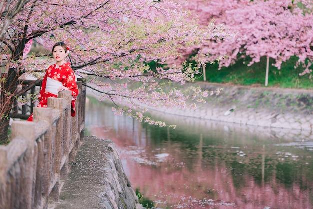 Mulher asiática vestindo quimono com flores de cerejeira, sakura no japão.