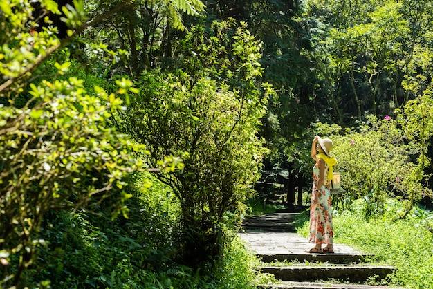 Mulher asiática viajando caminhando na floresta em xitou, nantou, taiwan